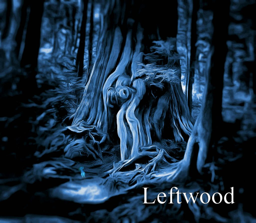 leftwood cover 2020